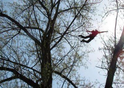 treeclimbing_italia